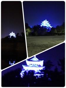 ブルーライトアップ名古屋城2014